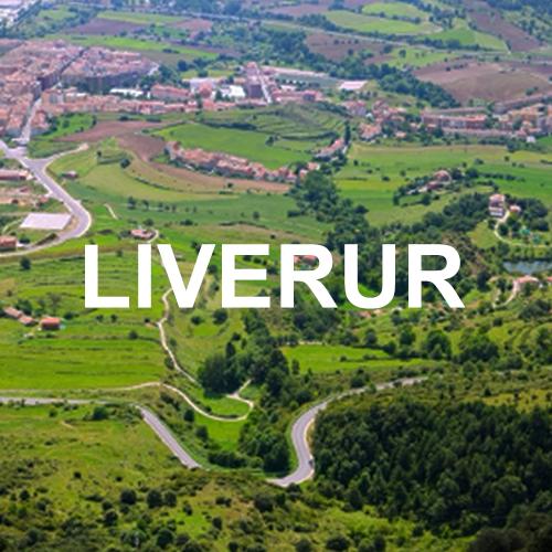 Forschungskonzept Living Lab in ländlichen Gebieten